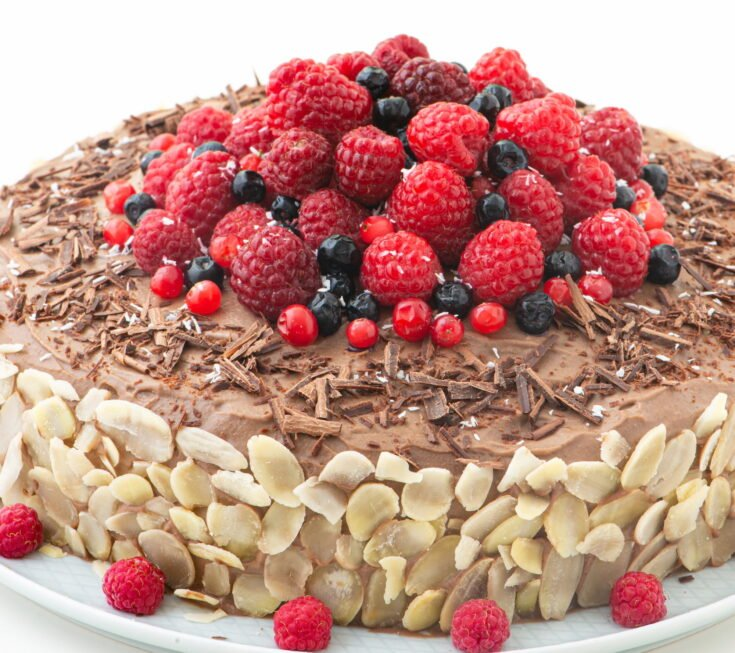 Chocolate Raspberry Oil-free Vegan Cake