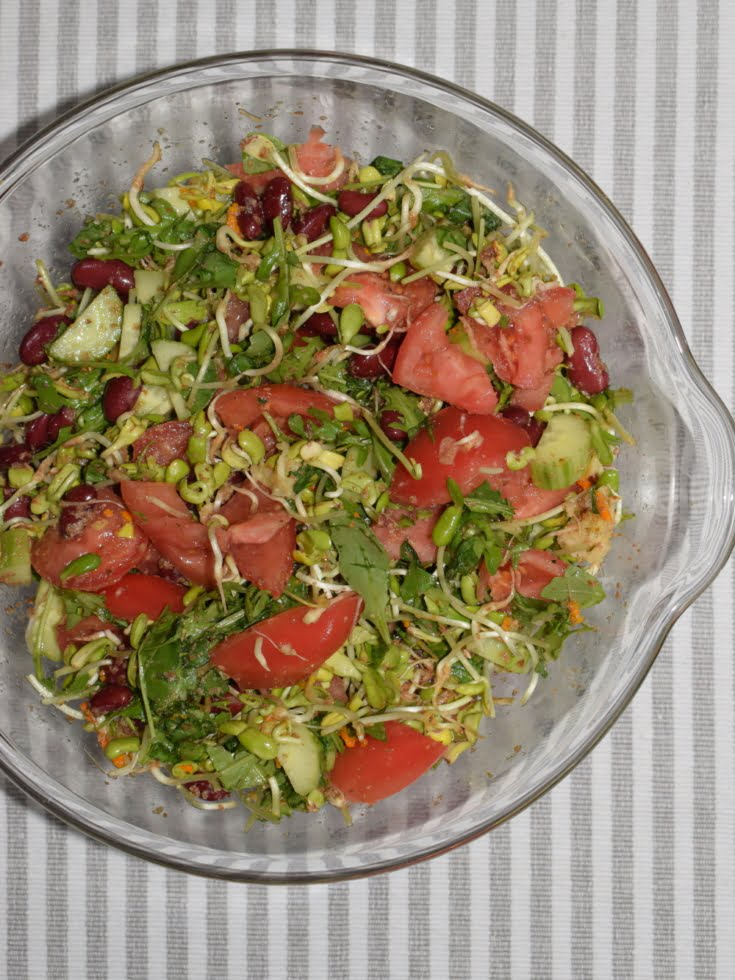 a large bowl of sunflower sprouts salad