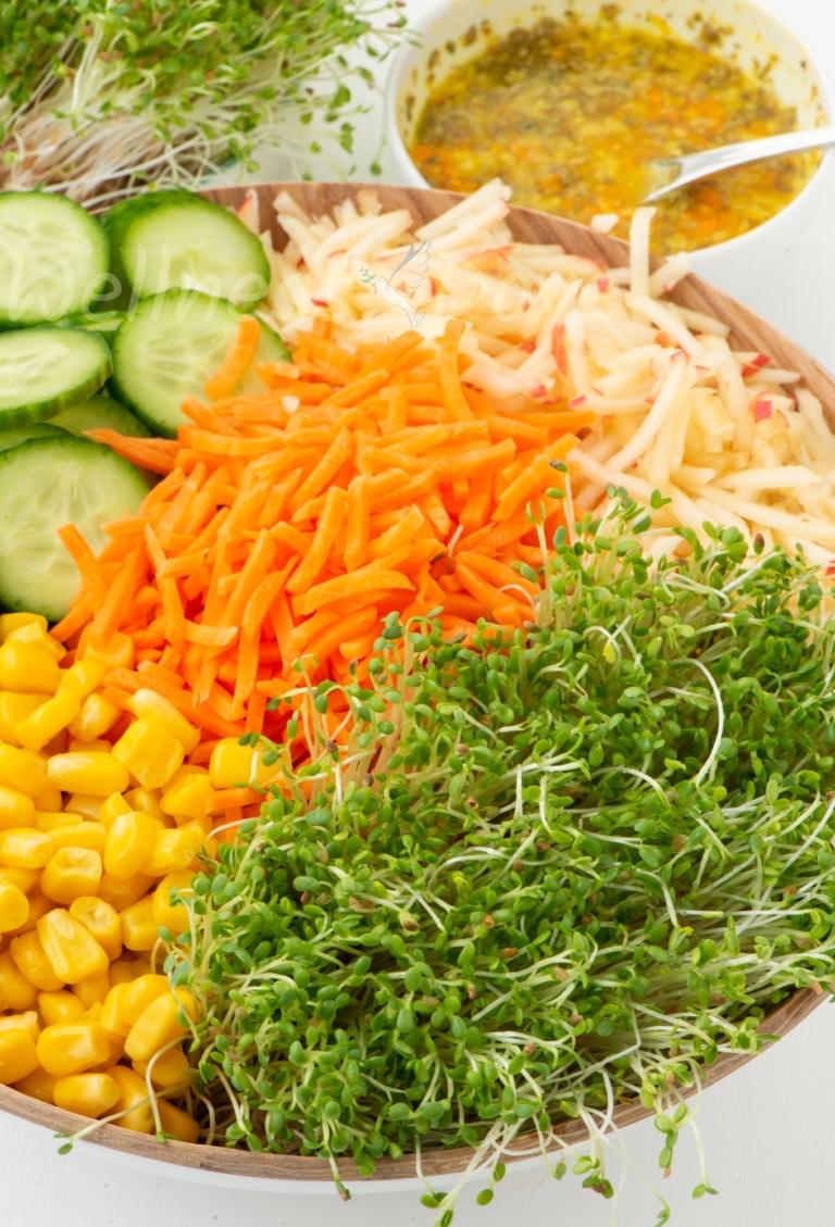 Vertical macro, alfalfa sprout salad