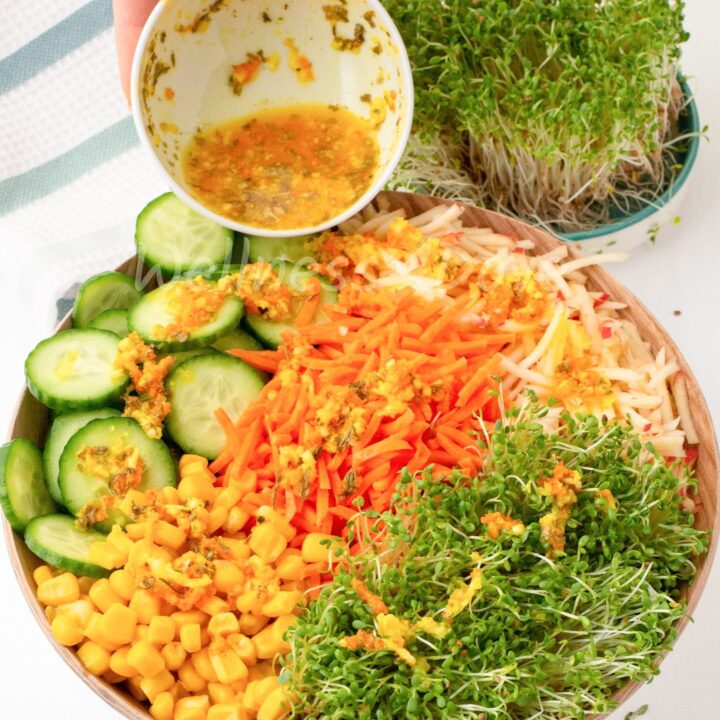 Alfalfa Sprouts Salad, Oil-Free Plant-based