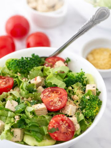 A super fresh and colorful salad made with only plant-based ingredients. Absolutely oil-free! Green salad, cucumber, cherry tomatoes, green onions all mixed together with super nutritious broccoli and delicious tofu cubes!