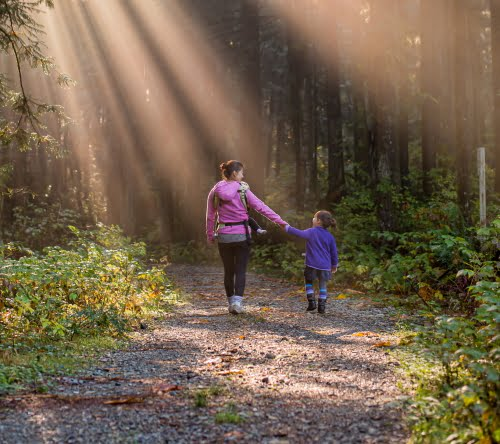 Woman and a child walking down a forest path and holding hands.
